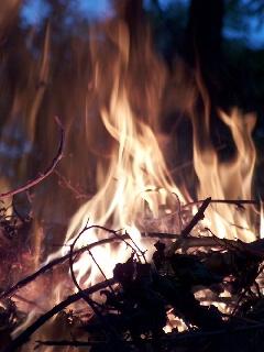 Veldbrande en die wet kan jou skroei  - Adv. Douw Venter, Pro Enviro Omgewingsimpakpraktisyns